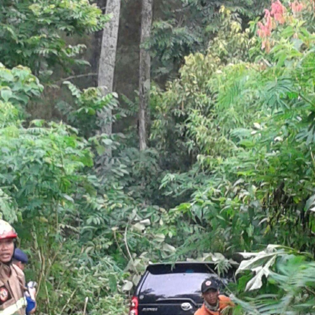 Avanza Nyungsep ke Hutan Lindung Dago Pakar