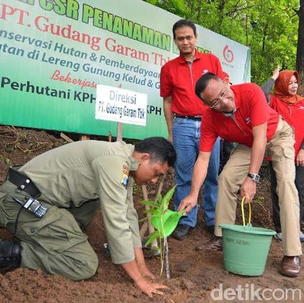 16 Ribu Bibit Bambu Ditanam untuk Selamatkan Mata Air Pegunungan