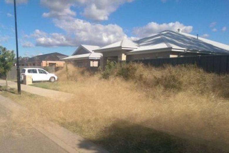 Rumput Kering Menginvasi Kota Kecil di Victoria Australia