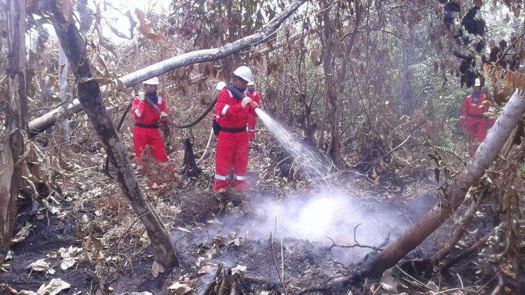 Penanganan Kabut Asap, Luhut: Begitu Ada Kebakaran Kita Langsung Declare!