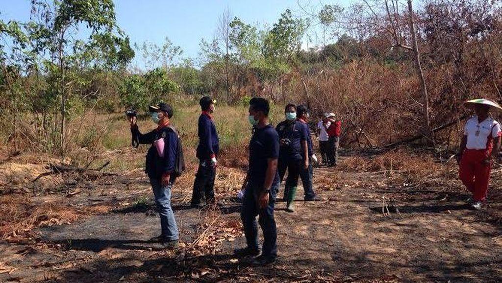 Polisi Buru Tersangka Lain di Kasus Tewasnya 3 Orangutan di Bontang