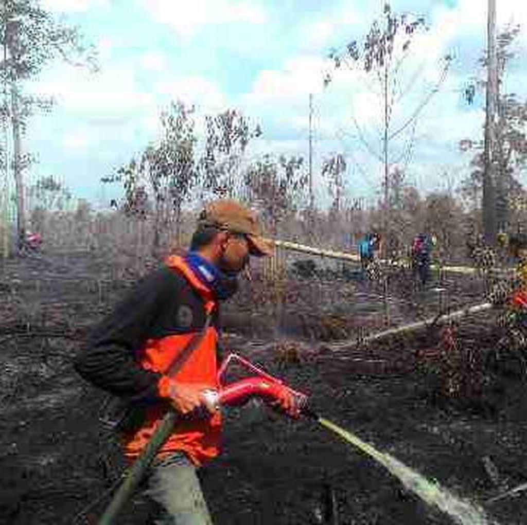 Pemerintah Harus Segera Eksekusi Pembakar Hutan yang Dihukum Rp 366 Miliar
