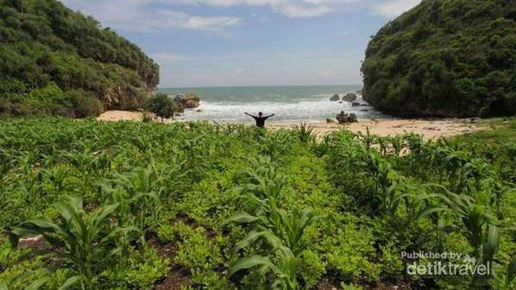3 Santri Hilang Terseret Ombak Pantai Wedi Ombo Gunungkidul