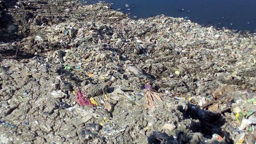 Begini Kondisi Waduk Pluit Dalam Proses Normalisasi: Terlihat Sampah Plastik