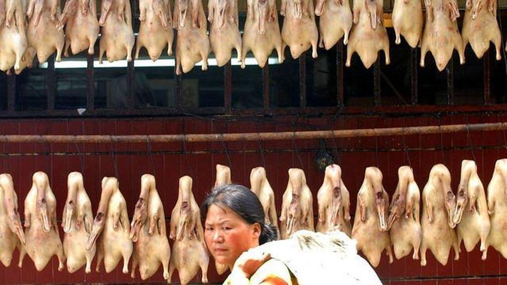 Temuan Makanan Berbahaya di Dunia, Termasuk Usus Ayam di Indonesia