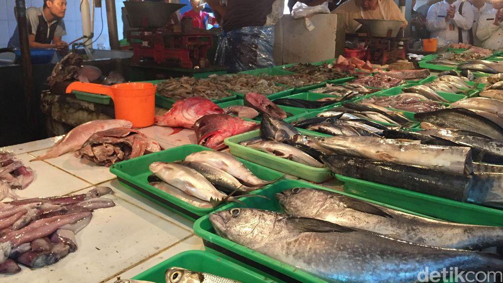 Sidak ke Pasar Perumnas Klender, BPOM Temukan Ikan Tuna Berformalin
