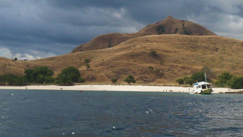 Pari Manta Siap Sambut Turis di Alam Laut Pulau Komodo