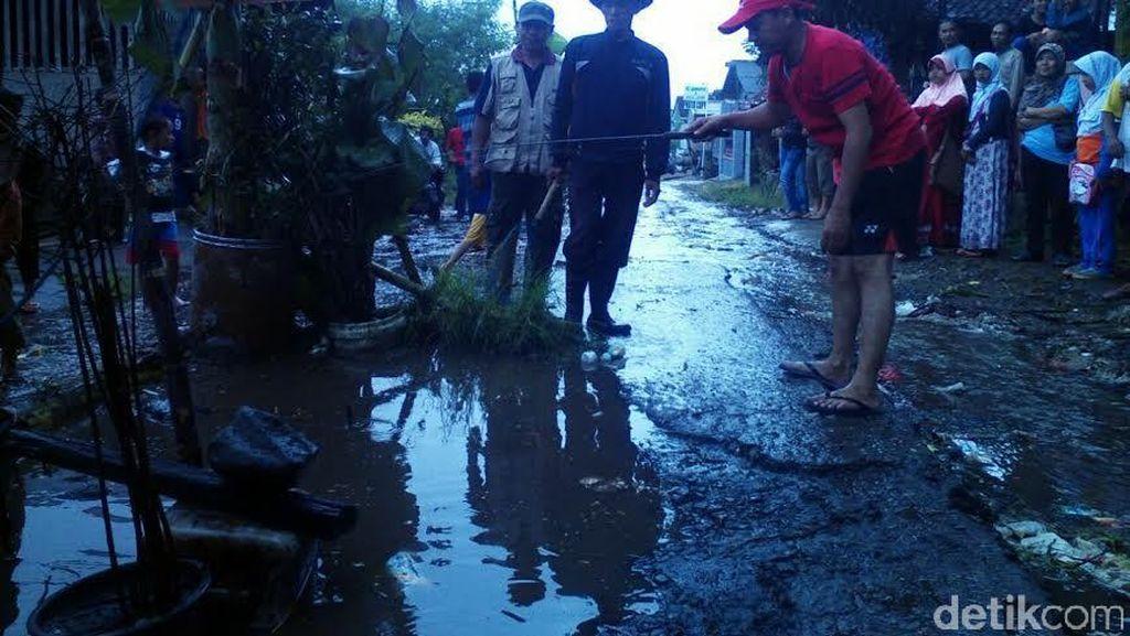 Warga Sukabumi Tanam Pisang dan Tebar Lele di Jalan Berlubang