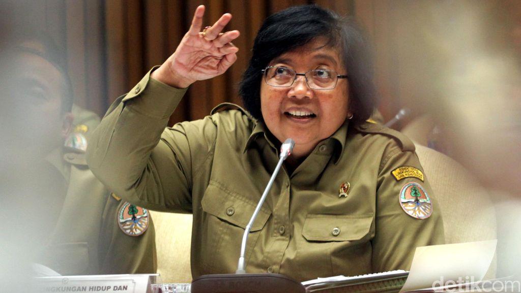 Menteri LHK: 2 Perusahaan Sedang Disidik Terkait Kebakaran Hutan di Riau
