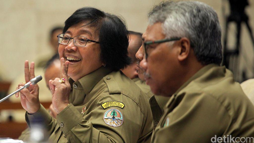Pemerintah Awasi Ketat Kebun Binatang Bandung