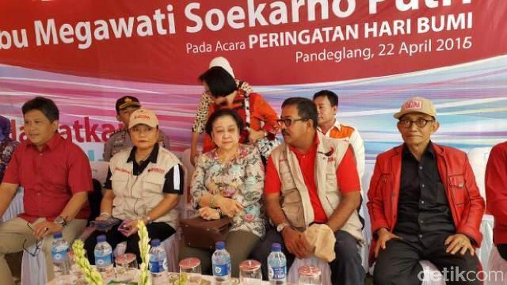 Peringati Hari Bumi, Megawati: Selamatkan Hutan dari Manusia yang Merusak