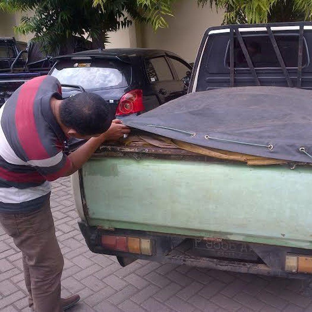 Polisi Amankan 1 Ton Pupuk Bersubsidi dari Pasutri asal Bondowoso