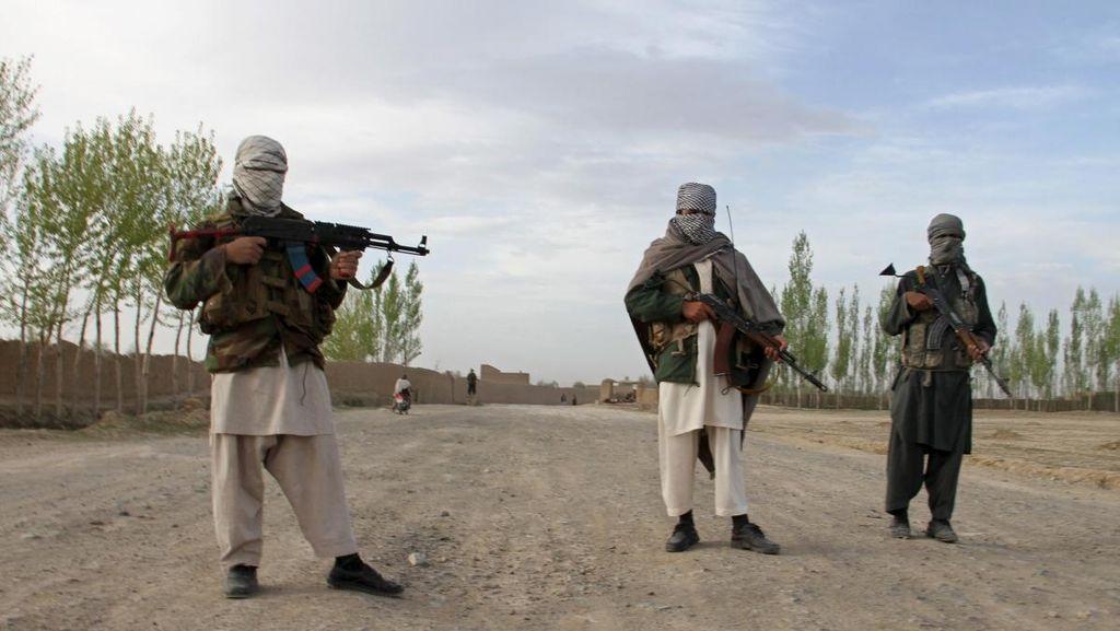 Ceroboh, Pengebom Bunuh Diri Taliban Tak Sengaja Tewaskan 8 Rekannya