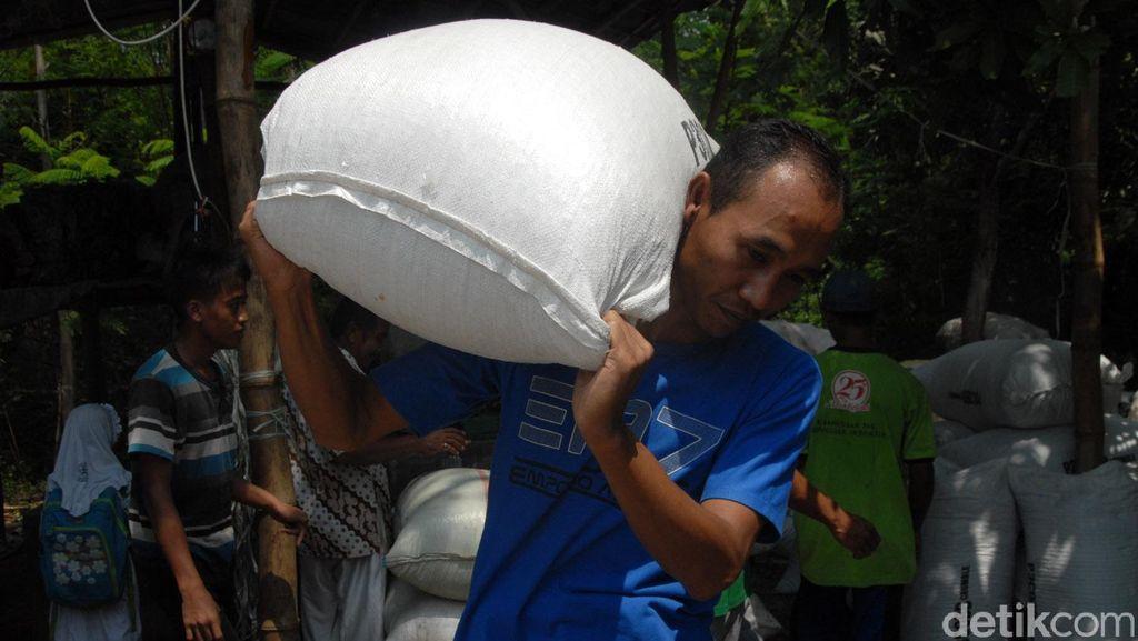 Momen Brigadir Iwan Bandar Sampah di Antara Karung Plastik dan Kertas