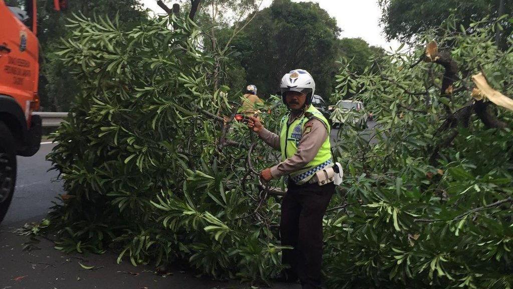 Ada Pohon Tumbang, Lalin Exit Tol Halim Arah Cawang Padat