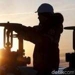 Ingin Harga Minyak Stabil, RI Dorong OPEC Tahan Produksi