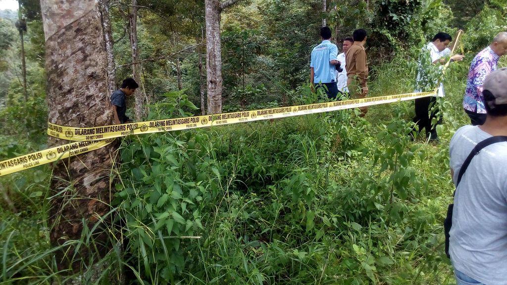 Penuh Ilalang, Ini Lokasi Pemerkosaan dan Pembunuhan Keji di Bengkulu