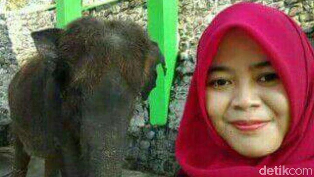Selfie dan Keakraban Dokter Via dengan Gajah yang Berujung Maut