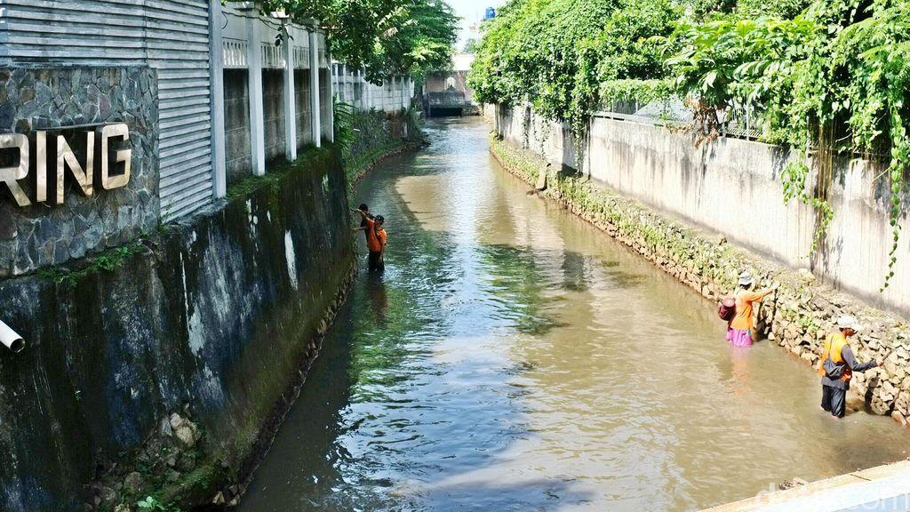 Menengok Sungai di Jati Padang Jaksel yang Bersih dari Sampah