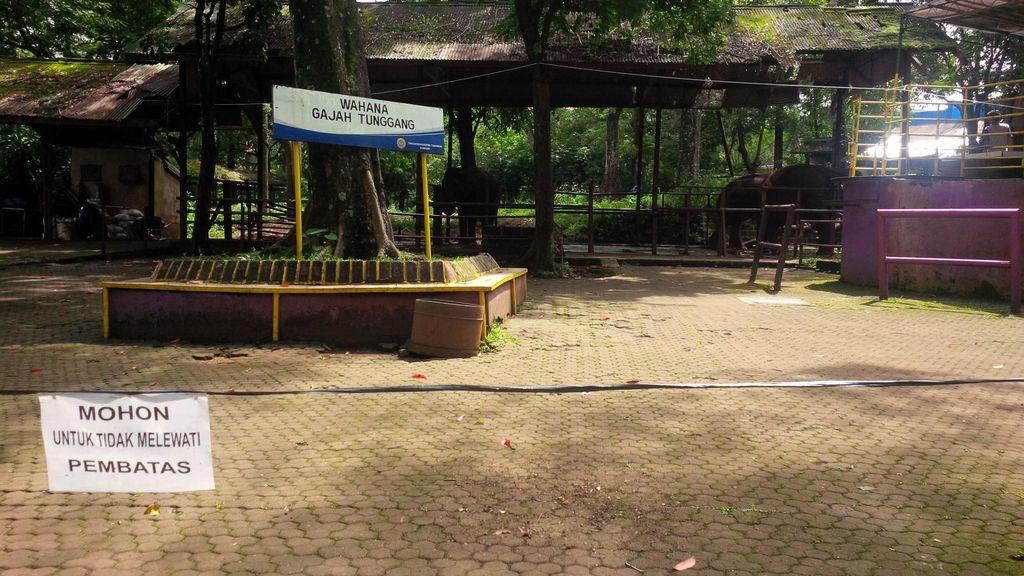 Pengelola Kebun Binatang Bandung Diberi Waktu 3 Bulan Perbaiki Sarana