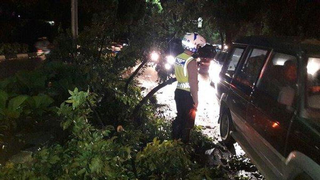 Pohon Tumbang di Bundaran Senayan, Lalin Arah Sudirman Terpantau Padat