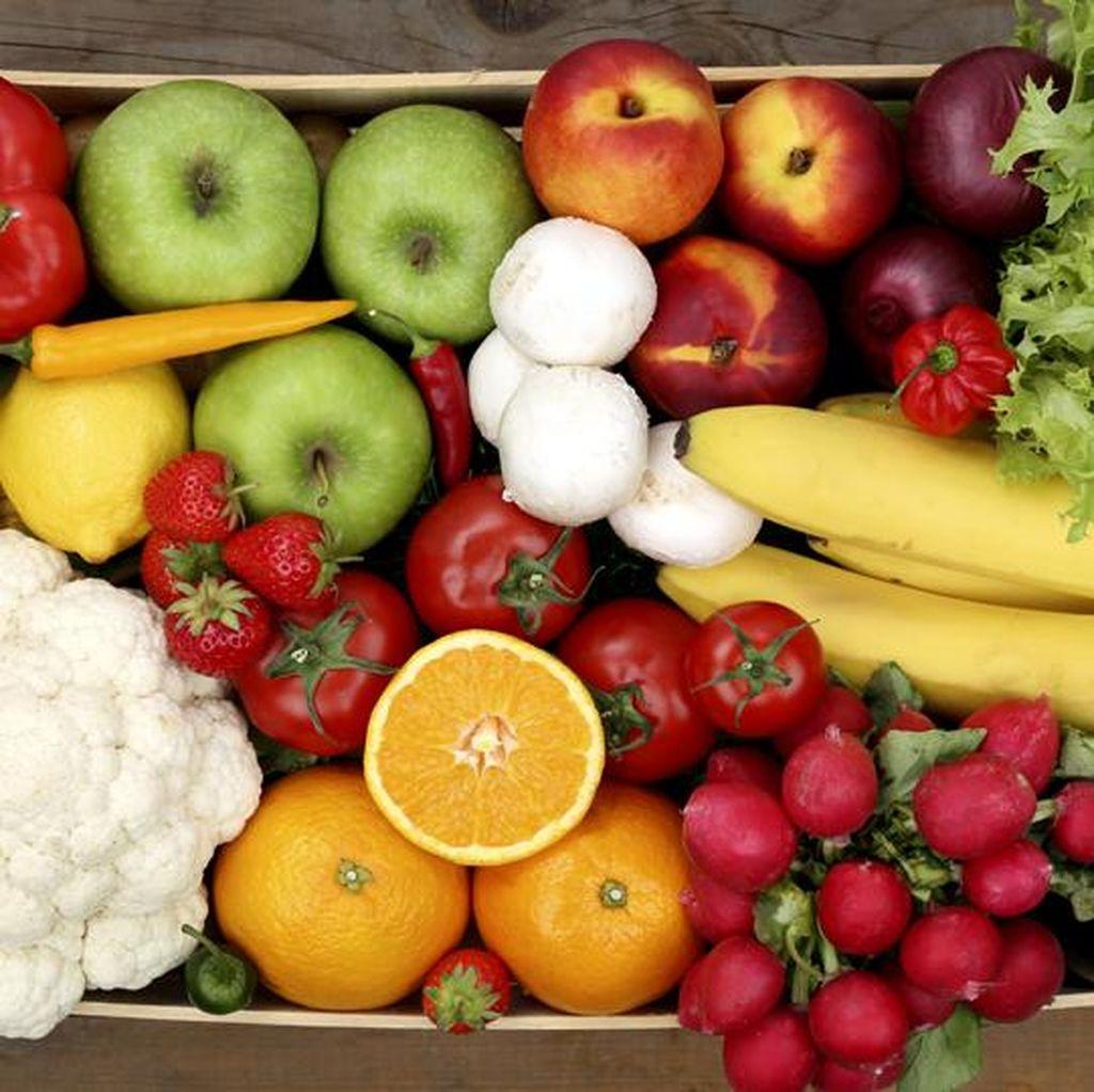 Apakah Kita Lebih Sehat Jika Meniru Pola Makan Manusia Purba?