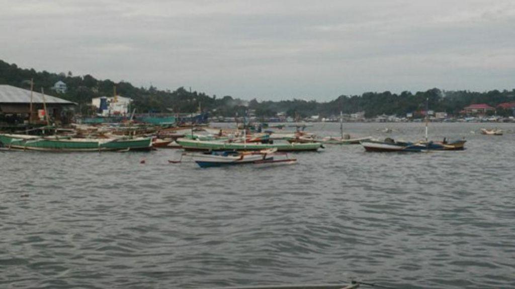 Nelayan di Papua Kesulitan Mendapatkan Ikan: Karena Hiu Sedang Musim Kawin