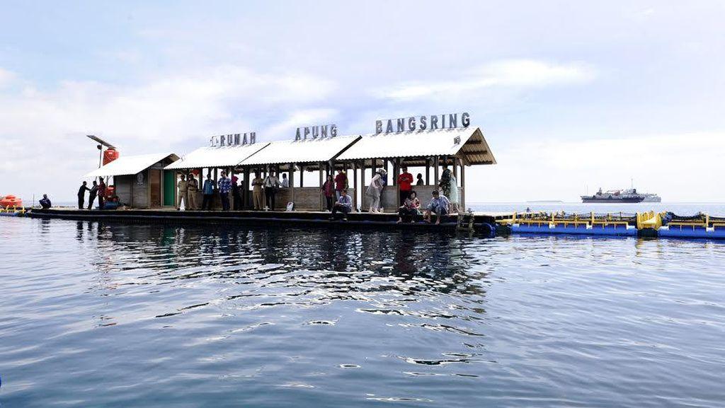 Ini Cerita Pelopor Bangsring Menjadi Area Konservasi Laut