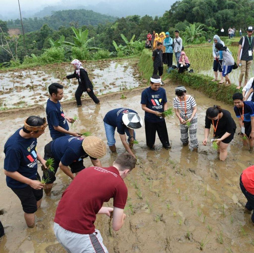 Kesan Istimewa Delegasi <I>World Village Conference</I> setelah Nyawah di Purwakarta