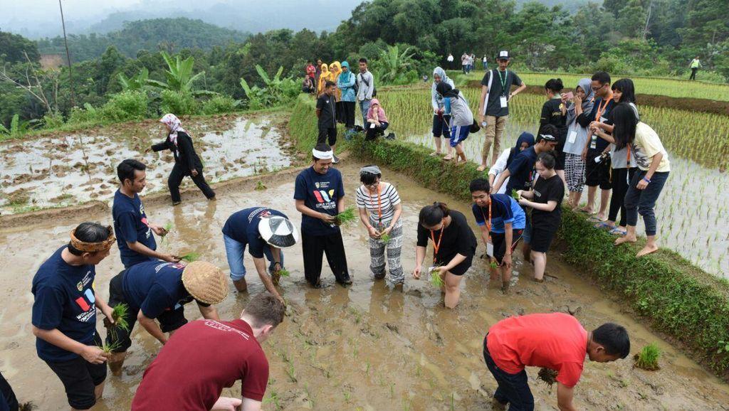 Kesan Istimewa Delegasi World Village Conference setelah Nyawah di Purwakarta