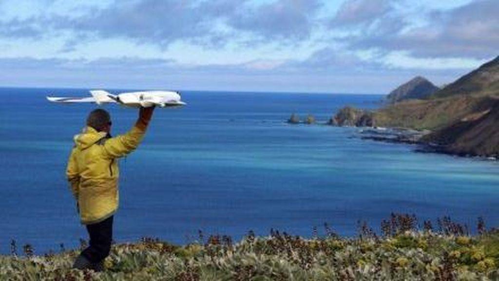 Hewan Perlu Dilindungi dari Dampak Penggunaan Drone