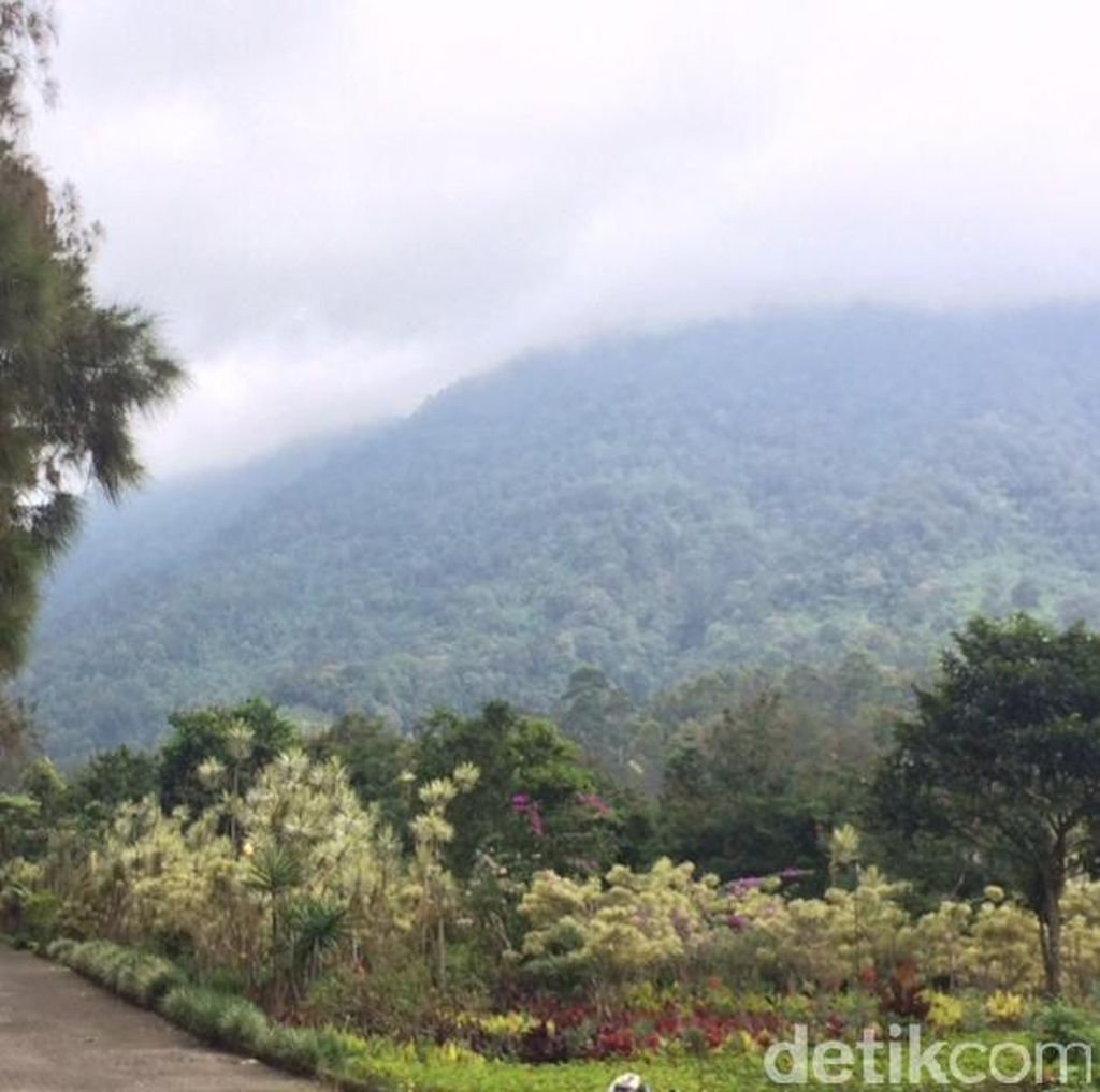 Dear Para Pendaki, Jangan Coba-coba Buang Sampah Sembarangan di Gunung Gede