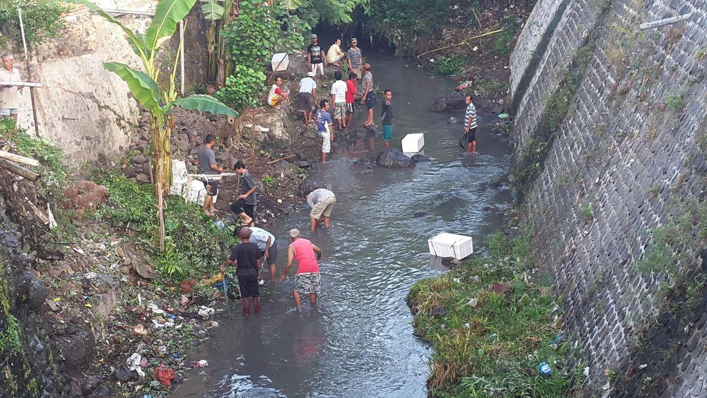 Gerakan Kembalikan Fungsi Sungai, Ribuan Ikan Ditebar di Sungai Kali Elo