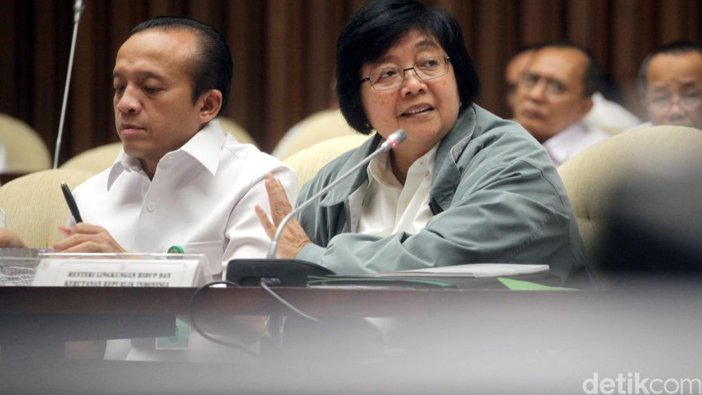 Menteri LHK Diskusikan Tindaklanjut Upaya Pengurangan Emisi Gas