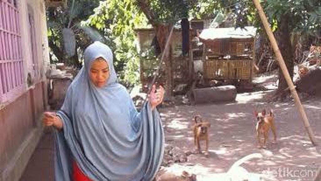 Cerita Lain dari Desy yang Pernah Menebus Ular Rp 75 Ribu: Daripada Dipotong Orang