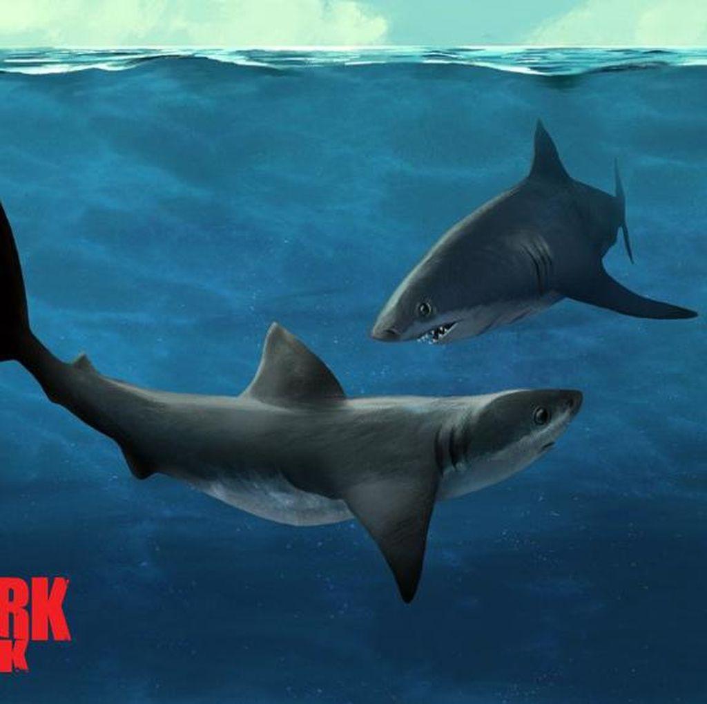 Bertahan 28 Tahun, Shark Week Hadir Lagi di Layar Kaca