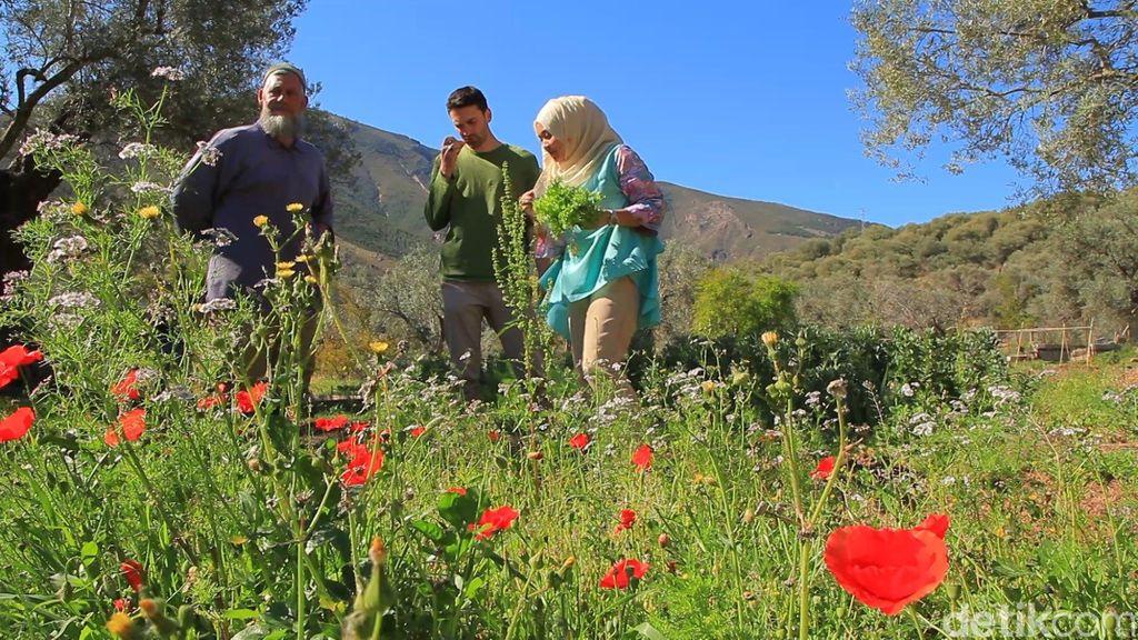 Alpujarras, Benteng Terakhir Muslim Spanyol
