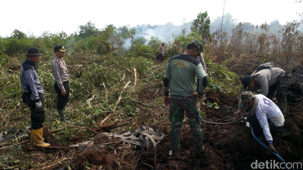 George Soros Dkk Tertarik Bantu Restorasi Lahan Gambut di Hutan Indonesia