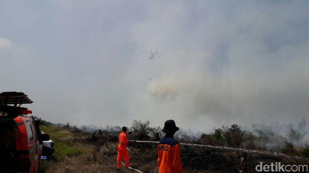Satgas Pencegahan Karhutla  Segel Lahan yang Terbakar di Riau