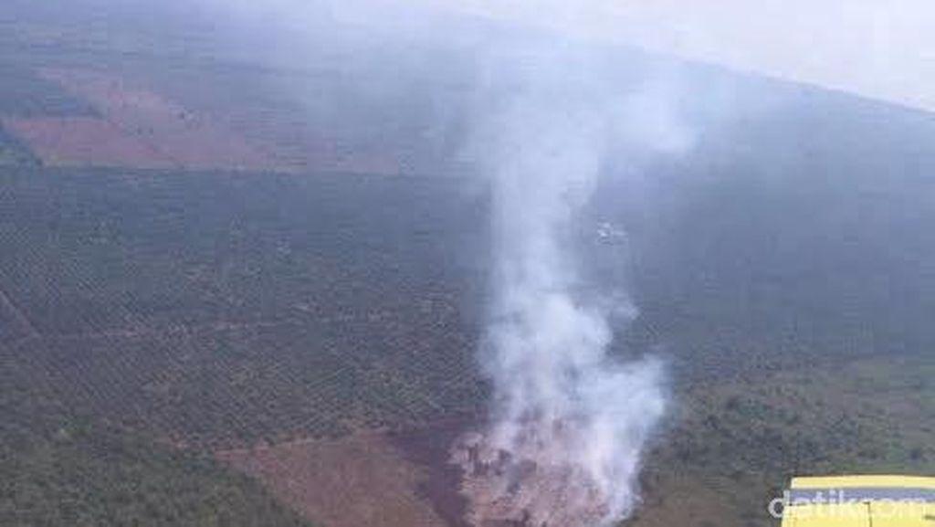 Polda Riau Hentikan Penyidikan 15 Perusahaan dalam Kasus Kebakaran Lahan