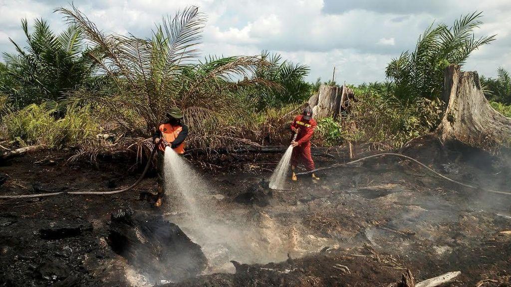 Kebakaran Lahan, Kepala BNPB: Penambahan Pasukan ke Riau Segera Dilakukan
