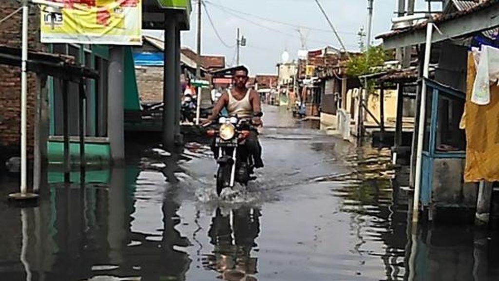 Dua Desa di Kabupaten Demak Ini Sudah 2 Bulan Tergenang Banjir Rob