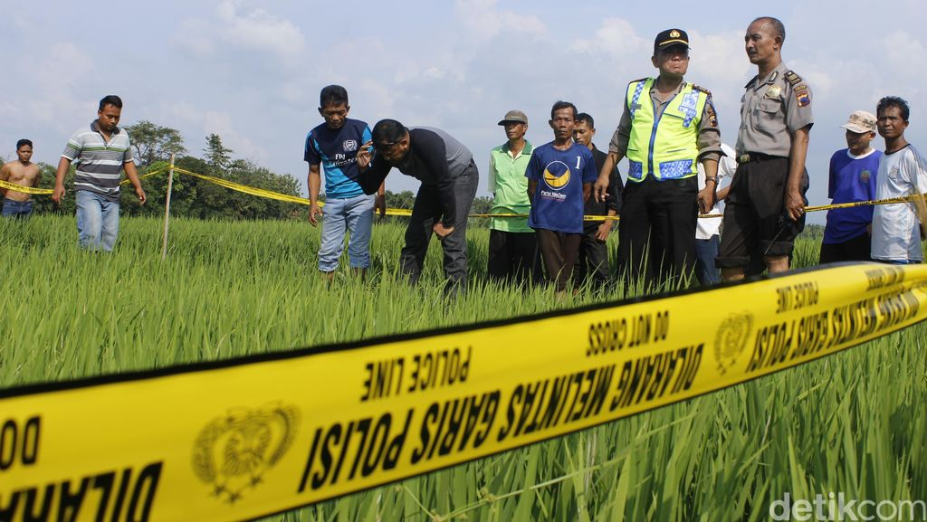 Pria Paruh Baya Ditemukan Tewas di Sawah, Polres Tegal Gelar Olah TKP