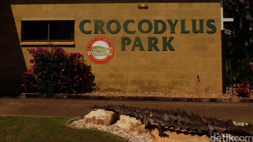 Berkeliling Crocodylus Park, Taman Buaya Terbesar di Darwin