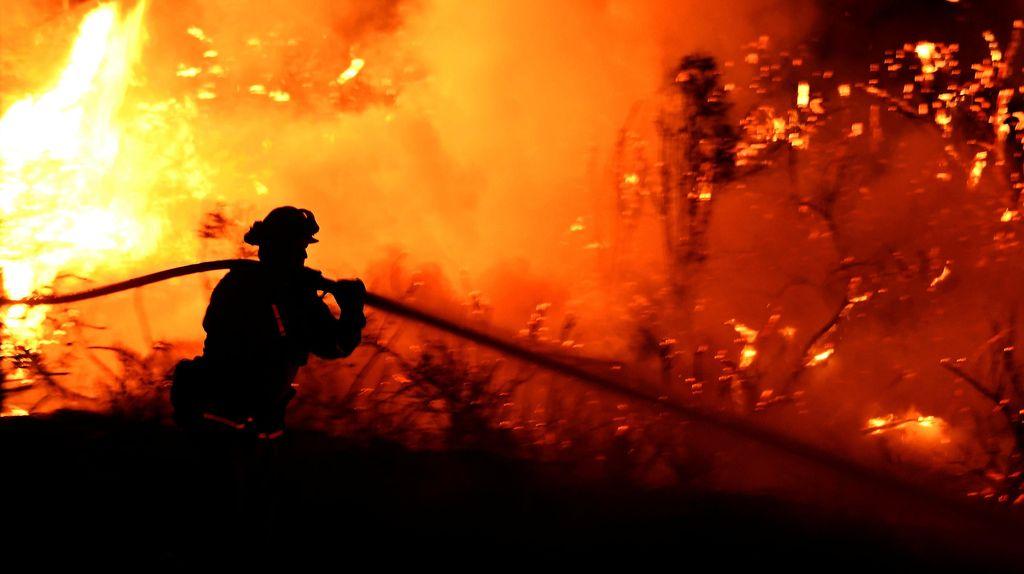 Taman Nasional Los Angeles Terbakar
