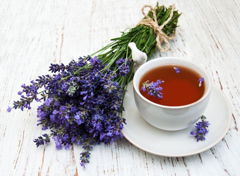 Чай лаванды полезные свойства