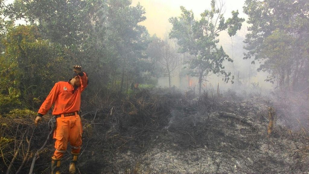 PN Jaksel Hukum PT NSP Bayar Rp 1 Triliun ke Pemerintah Terkait Kebakaran Hutan