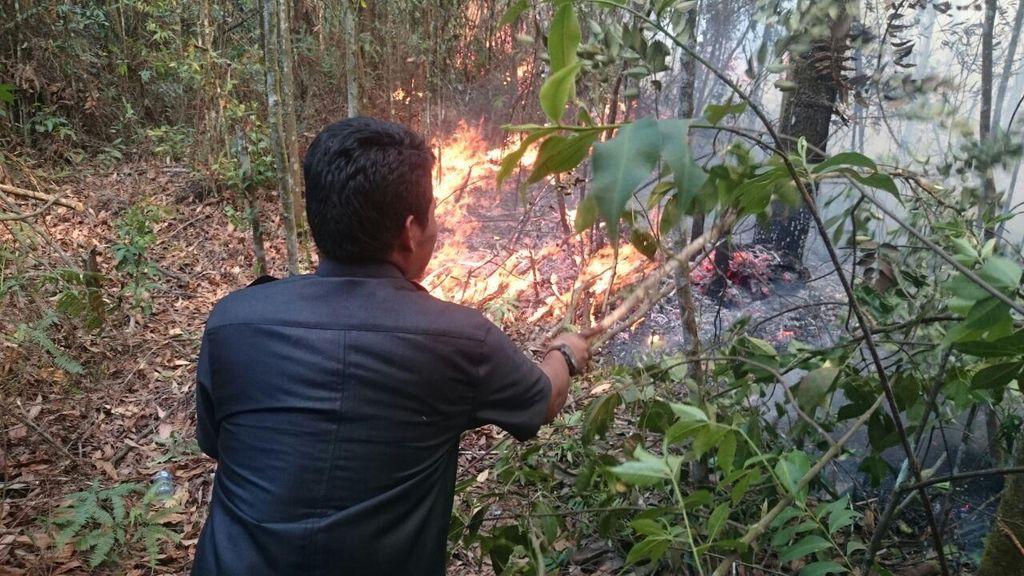 Lahan Sekitar Kampus UNRI Pekanbaru Terbakar