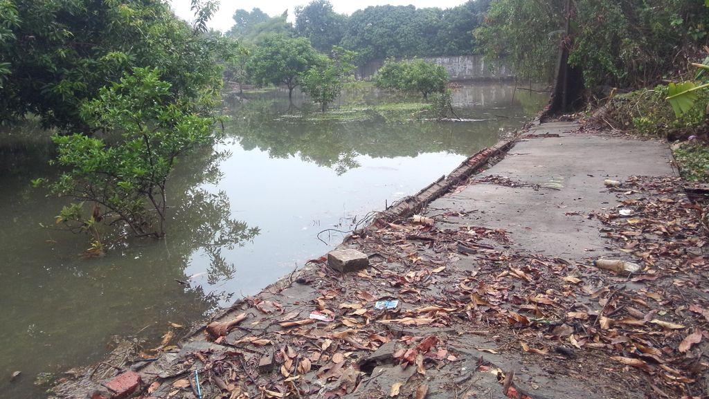 Kadis Tata Air DKI: 6 Tembok di Perumahan Jebol Sebabkan Banjir di Kemang