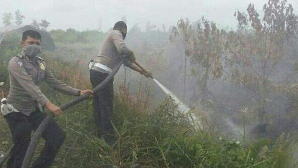 Persiapan KLHK Harus Matang untuk Tindak Pelaku Pembakar Hutan dan Lahan